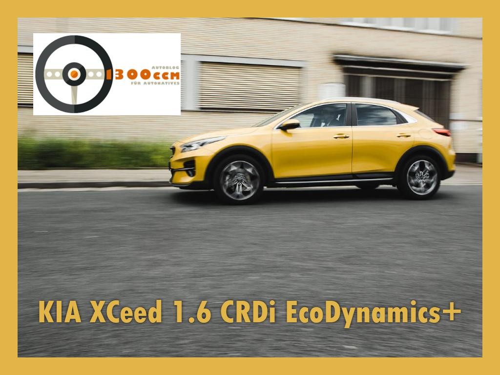 Kia XCeed im Fahrbericht auf bei den AutoNatives